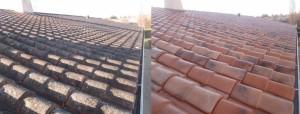 Nettoyage-toiture-Chantonnay