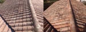 Nettoyage-toiture-La-Roche-sur-Yon