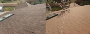 Nettoyage-toiture-la-Roche-sur-Yon2